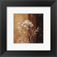 Delicate Beauty II Framed Print