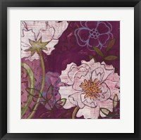 Framed White Peonies