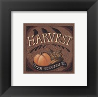 Framed Harvest