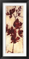 Orchid Silhouette I Framed Print