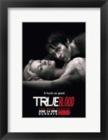 Framed True Blood - Season 2  [Sookie and Bill]