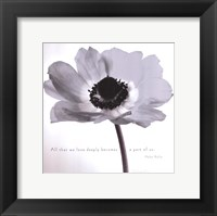 Framed Poppy Love