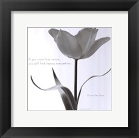 Framed Tulip Beauty
