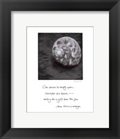 Beach Shell Framed Print