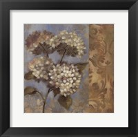 Hydrangea on Soft Blue Framed Print