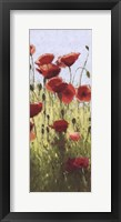 Framed Mountain Poppies I