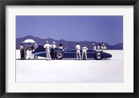 Framed Bluebird at Bonneville