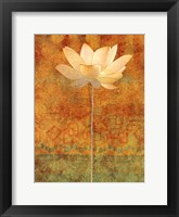 Framed Abstract Lotus I