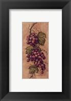 Framed Vintage Grapevine l