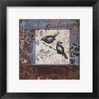 Bluebird 1 Framed Print