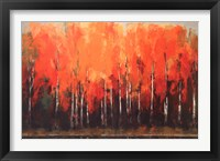 Framed Birch Shoreline