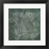 Framed Leaves of Spring