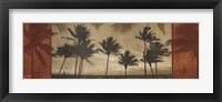 Framed Sunlit Palms I