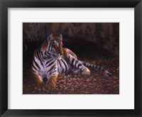 Framed Tiger's Lair