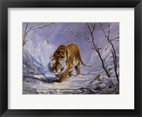 Framed Tiger in the Snow