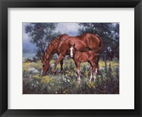 Framed Horse and Foal