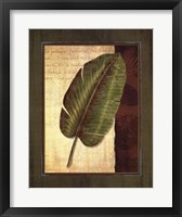 Palm Tropical II - grande Framed Print