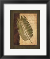 Framed Palm Tropical III