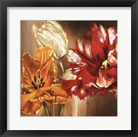 Tulips - square Framed Print