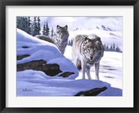 Framed Wolves on the Prowl