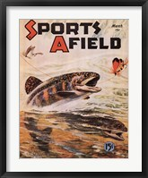 Framed Sports Afield
