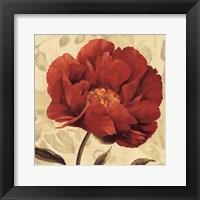 Floral Romance II C Framed Print