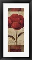Floral Romance II Framed Print