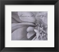 Aimer III Framed Print