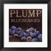 Plump Blueberries Framed Print