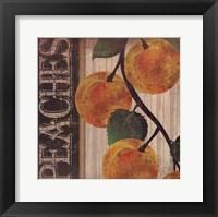 Peaches Framed Print