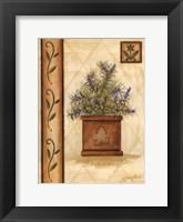 Framed Tuscan Rosemary