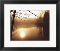 Framed Fog on Shelly Lake II