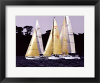 Race at Annapolis I Framed Print