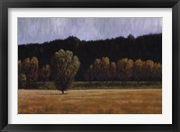 Framed Cottonwood Country I