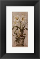 Bulbs In Bloom ll Framed Print