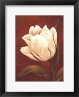 Framed Tulip On Red- mini