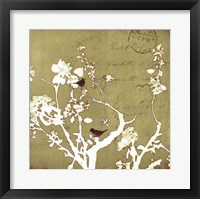 Song Birds II Framed Print