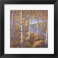 Framed Fall Aspen I - mini