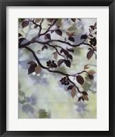 Evening Shadows I Framed Print