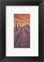 Framed Soleil De Provence I