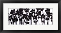 Black Flowers on White II Framed Print