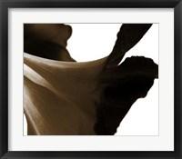 Framed Reveal on White II