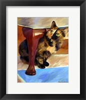 Framed Calico Face