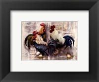 Rooster Trio Framed Print