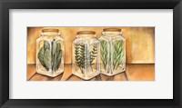 Spice Jars I Framed Print