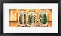 Framed Spice Jars II
