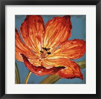 Framed Flame Tulip I