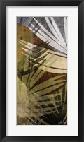 Framed Palm Frond II
