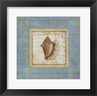 Bijou de Mar I Framed Print