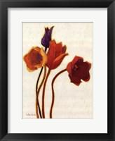 Tulipan II Framed Print